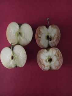 Teacher Uses Bruised Apple To Show Crushing Effects Of Bullying   HuffPost
