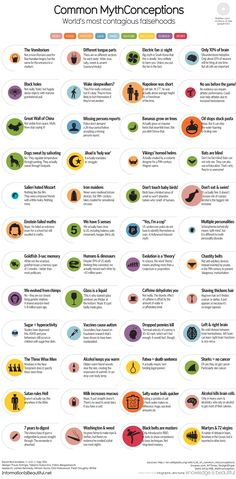 World's Most Contagious Falsehoods by David McCandless http://www.informationisbeautiful.net/visualizations/common-mythconceptions-worlds-most-contagious-falsehoods/