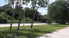 CLAVE: ELOCIE  El terreno ubica dentro de el Residencial El Cielo que cuenta con 27 hectáreas y tiene una ubicación privilegiada en el Km. 95 del Boulevard Playa del Carmen, a solo 5 Km. del centro de la ciudad, en la exclusiva zona diamante de la Riviera Maya.