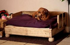 Wood Pallet Dog Bed