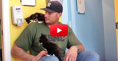 When A Group Of Reluctant Men Were Forced To Hold Kittens For The First Time, Hilarity Ensued. Now They Are All Cat Fans! | The Animal Rescue Site Blog