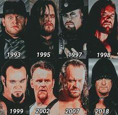Wrestling Stars, Wrestling Wwe, Wwe Funny, Haha Funny, Wrestlemania 29, Undertaker Wwe, Vince Mcmahon, Stone Cold Steve, Wrestling Superstars