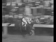 Seabiscuit vs War Admiral in 1938 race. Such an awesome race! I like that moment when they are running even, and then slowly Seabiscuit just pulls away! He was such a horse! :)