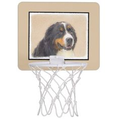 #Bernese Mountain Dog Mini Basketball Hoop - #bernese #mountain #dog #puppy #dog #dogs #pet #pets #cute #bernesemountaindog