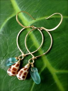 Hawaiian Hebrew Shell Earrings with Beach Glass, Sea Glass on 14K Gold Filled Hammered Hoops. $78.00, via Etsy.