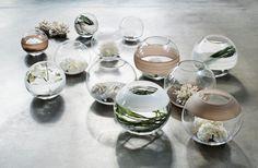 Kelly Hoppen Large Glass Globe