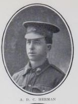 HERMANN,   Alfred   Danial   C.   Trooper,   No.  1939,   11th   Light   Horse.   Born   at   Maryborough,   and   educated   at   Urangan.   The   son     of   the   late   G.   and   A.   M.   H.   Hermann   (now   Mrs.   Northcott),   of   Nikenbah,   Pialba   Line.