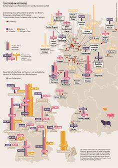 Tote Tiere am Kettenzug.  Schlachtungen nach Fleischkonzernen und Bundesländern, 2014
