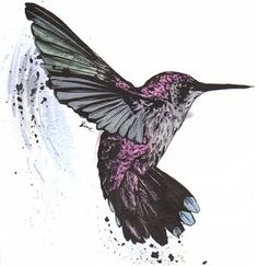 Tattoo photo: Hummingbird This photo was uploaded by brieaddict