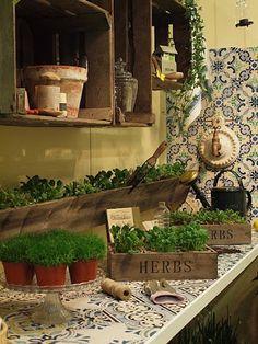 Una segunda oportunidad...¡Ha reciclar¡ Old Boxes, Small Space Gardening, Mexican Art, Dream Garden, Play Houses, Garden Plants, Outdoor Gardens, Herbalism, Outdoor Living