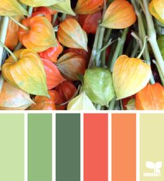 lanterns hues - design seeds