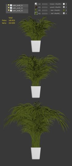 Palm tree in the pot by rnax on @creativemarket