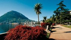 Things to see in Lugano - Lugano Itinerary by La Residenza, Lugano - Ticino - Switzerland. Lugano, Most Beautiful Cities, What A Wonderful World, Pilgrimage, Wonders Of The World, Places To Travel, 1990, Around The Worlds, Lakes