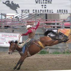 Maple Creek Cowtown Pro-Rodeo » Town of Maple Creek