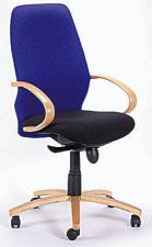 A practical range of chairs available in any colour combination. Comes standard with a nylon 5 star base and gas height adjustment. Color Combinations, Techno, Chairs, Furniture, Home Decor, Color Combos, Decoration Home, Room Decor, Colour Combinations