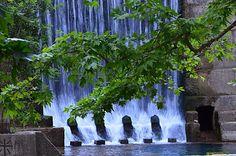 Rhodes 7 springs
