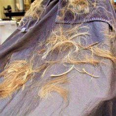 Hair Falling Out, Hair And Beauty Salon, Hair Transformation, Capes, Barber, Haircuts, Long Hair, Floor, Hair
