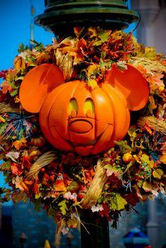 my favorite way to celebrate my favorite season Disney World Pictures, Disney Pics, Disney Love, Halloween Pictures, Halloween Ideas, Happy Halloween, Disney World Halloween, Creative Pumpkins, Disney Movies To Watch