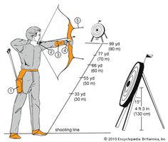 Art:This target archer has equipped himself with a quiver (1) to hold his arrows and with finger tabs (2), an arm guard (3), and a hand prot...