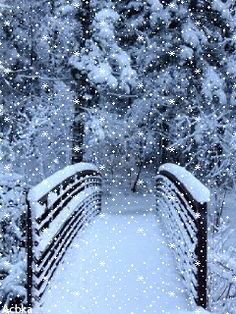 Winter - Animation on the phone # Winter – Animation on the phone # 1105955 Merry Christmas Gif, Christmas Scenery, Winter Scenery, Winter Christmas, Winter Images, Winter Pictures, Christmas Pictures, Winter Love, Winter Snow