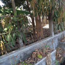Tanah Dijual di Jogja Selatan Pinggir Ringroad Dekat UMY