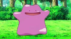 Pokemon GO Rare pokemon: Articuno Zapdos Moltres and Ditto found in developer code