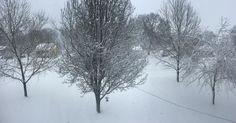 Friday Jan 22nd Throwback to the snow   #nashville #nashvillephoto #nashvillecity #iphone6photography #snow #blizzard2016 #nashvillesnow #nashvillesnowday  by thewxrldisvgly