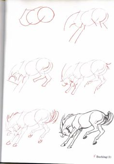 How-To-Draw-Horses .no, diy, Joy, Tegning, Drawing Horse Pencil Drawing, Horse Drawings, Realistic Drawings, Animal Drawings, Art Drawings, Animal Sketches, Art Sketches, Easy Drawings For Beginners, Sketches Tutorial
