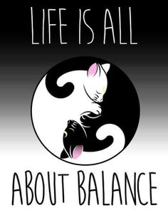 * * Yin & Yang - All about opposites. One could not be without the other. Black & White, Yes & No, Front & Back, Up and Down, Pain and Painless, Sorrow and Joy, and so on.