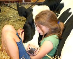 Girl & Cow 2 | Flickr - Photo Sharing!