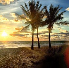 Good Morning and Happy Friday, Courtesy of FtLauderdaleSun