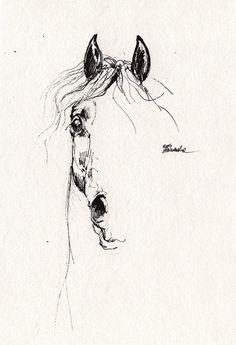 Arabian horse original pen drawing by AngelHorses on Etsy