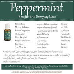 Scents & Scentsibility, Young Living Oils: Young Living's Peppermint Essential Oil
