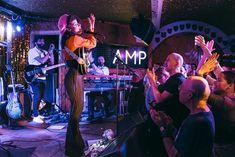 Lianne La Havas, Concert, Concerts