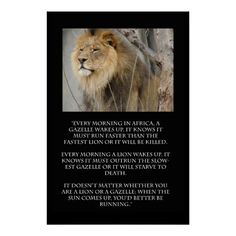 Shop Lion Gazelle Running Quote Poster created by jhimages. Personalize it with photos & text or purchase as is! Good Man Quotes, Live Quotes For Him, Revelation 5, Lions Photos, Lion Quotes, Lion Poster, Buddha Quote, Running Quotes, Xc Running