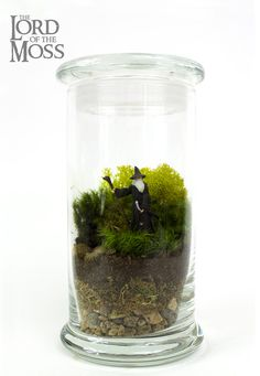 Geeky Terrariums Feature Star Wars, Hunger Games, and More