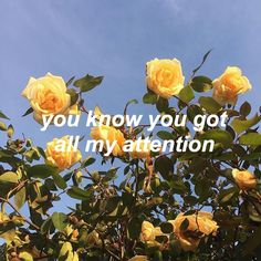 single- the nbhd // aesthetic quotes