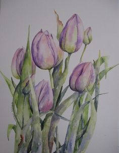 Pink Tulips  (Watercolour)