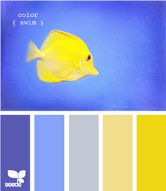 happy blues and yellows. love.