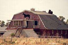 Old Horse Barn.  Near Spencer, Oklahoma