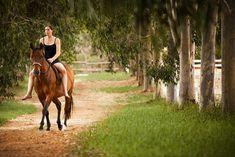 horse photography - www.cooperstudio.com.au