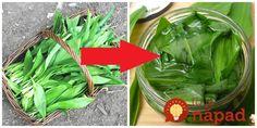Medvedí cesnak je jedna úžasná bylinka – nesmierne liečivá a aj veľmi chutná. Jediný háčik je v tom, že ho máme k dispozícií len pár týždňov v roku. Poradím vám však úžasný tip, ako si ho uchovať na celé mesiace. U nás je tento recept tradíciou každú jar. Odporúčam, je to naozaj úžasná vec. Stačí,... Rodin, Medicinal Herbs, Celery, Pesto, Spinach, Spices, Parsley, Vegetables, Food