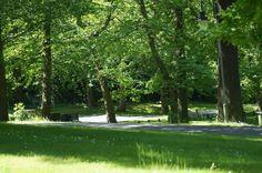 Abbey_Wood_Caravan_Site.jpg