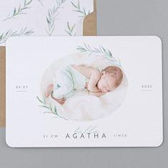 Geburtskarten - B49-019