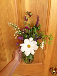 Flowers we like
