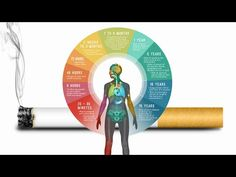 WHAT STOPPING SMOKING DOES TO YOUR BODY | RALPH SMART – INFINITE WATERS DIVING DEEP