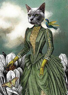 dama gata, ilustración de Katherine DuBose Fuerst