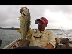 How to Locate Bass in the Summer