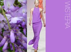 WeConnectFashion Trends| WOMEN'S S/S 2014 MUST HAVE COLOR. TREND COUNCIL, International Trend Forecasting Report For Fashion Business