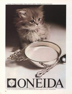 Oneida Kitten, 1981 advertisement.  I thought this was the cutest kitten ever.